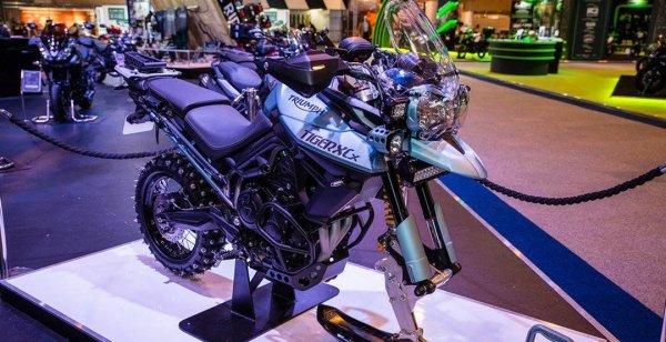 Triumph продемонстрировали зимний байк Tiger 800 Ice