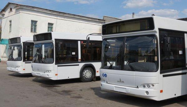 В Нижегородской области спортивные учреждения получили новые автобусы
