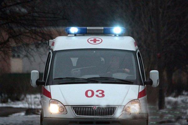 ДТП с участием автобуса и грузовика произошло в Москве